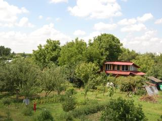 beautiful house ,in a beautiful place surrounded by forest,near Bucharest, Bucarest