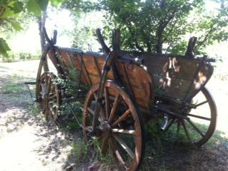an 100 years old original wagon