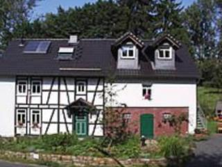 Vacation Home in Busenhausen - quiet, comfortable, beautiful (# 3989), Busenberg