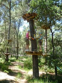 Tree Treking in Charleval