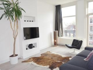 Stylish, central, just renovated 2b by Vondelpark, Amsterdam