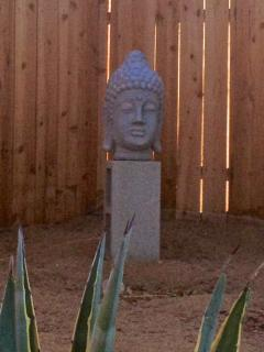 Garden Buddha, past the fance another .25 acre to explore.