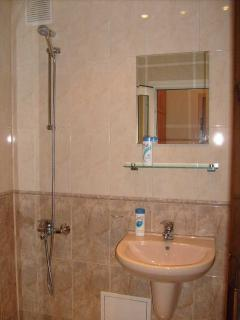 Shower, toilet, running hot water, central heating