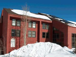 Ski In/Out Condo - 1 bedroom luxury on the slopes!