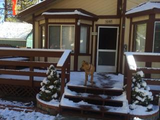 DOG FRIENDLY-Flying Bear Cabin A Pilot's Paradise!, Big Bear City