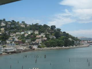 Sausalito  hills,  from  the  deck