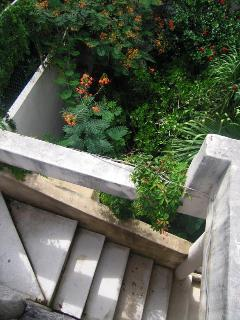 Cottage stairway to roof terrace