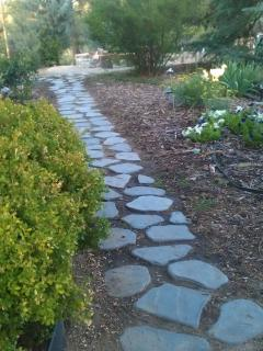 Pathway to Firepit and more!