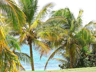 Bodhi Playa Orange -AS SEEN ON HGTV CARIBBEAN LIFE, Isla de Vieques