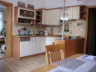 Lovely 3BD house in Brno ♫♪ nearby the Brno lake ♫