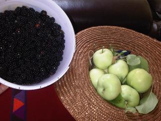 Right outside our front door, you can pick fresh juicy plump blackberries in season.  Deliscious!