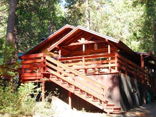 (23) Arnett's Cabin, Yosemite National Park