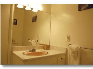 Badkamer 2 met alleen een douche