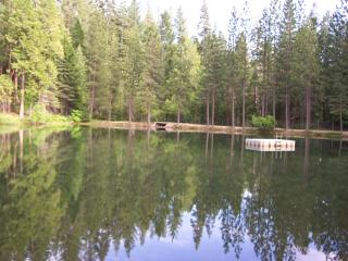 Bring your swimming suit and dive in the Sugar Pine private lake.