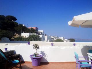 Spacious Apt. with roof-terrace & garden, Milos