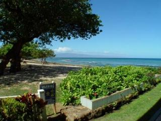 Hale Kai #103 - Your Home by the Sea in West Maui, Lahaina