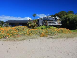 PALM BEACH, Isla Waiheke