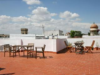 Columns Duplex Terrace and Patio Seville old town