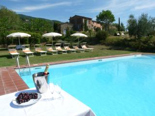 Pool is 50 metres from the villa across soft grass and has a new fence and gate