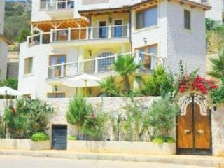 (001JV) Great Homely villa