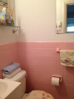 1 of 2 Bathrooms, with walk-in shower
