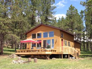 Custer Cabin - Newly Renovated, Upgraded Fiber Internet, Roku