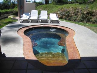 the jacuzzi pool - a part of the entertaining..