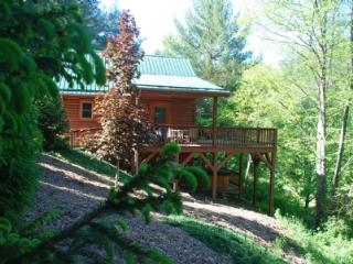 Autumn Mist-Trout Stream_4.5 acres_hot tub_pool table_near Boone/West Jefferson_wifi_pets_, Fleetwood