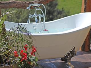 ROSEBUD COTTAGE - ROMANCE -MIDWEEK SPECIALS!, Auckland Region