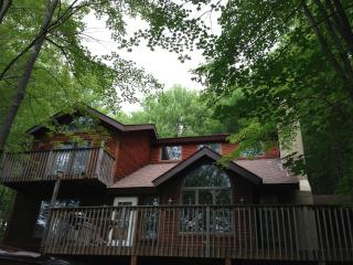Beautiful home, nestled in trees, walk to beach, Lake Ariel