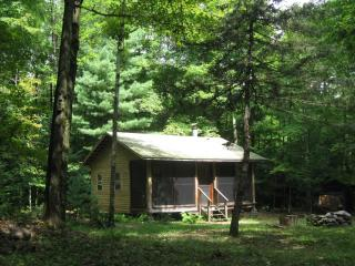 Woodland retreat - cabin near Oneida Lake, Camden