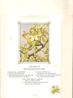 'Pear Tree Ferry' by Mary Barker