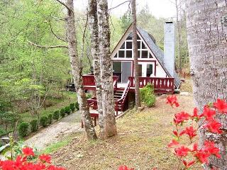 Family Mountain Getaway - 2 BR/2 BA Private Cabin Easy Access, Robbinsville