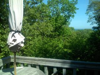 Aquinnah - Vineyard Up-Island Treehouse - Waterviews