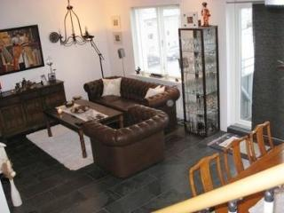 Bright, Cozy and Modern Apartment in Downtown Reykjavik - 1522
