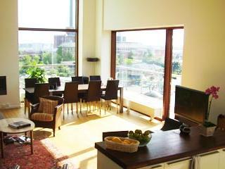 Luxury Penthouse Apartment With 3 Balconies - 305, Copenhagen