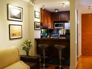 In Out - Beautiful 2 BR / 2 BATH in Providencia /, Santiago