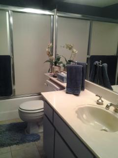 Bathroom with tub and shower combo.