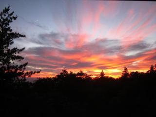 AMAZING SUNSET VIEWS ~ Paradise Pines Retreat, private cabin, playhouse,wildlife