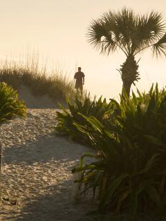The Dunes & Beach are just steps away!