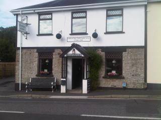 Emlyn Arms, Llanarthne Sa32 8JE. Pub with rooms., Carmarthen