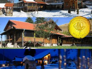 ski chalet near Borovets ski resort Bulgaria sleeps 15 sauna jacuzzi gym tavern A1 views