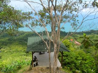 250-Acre Private Jungle Reserve with Ocean Views