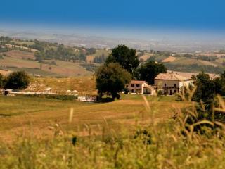 Cottage Catria, Pergola