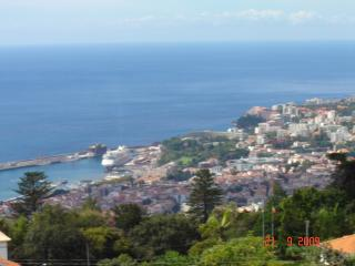 Spectacular View of City, Harbour and Gardens, Funchal
