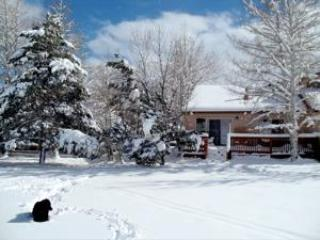 Back of cottage taken from golf course, a Winterwonderland. Come and play!