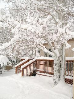 Back deck in Winter with snow on Aspen