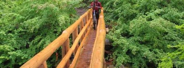 Explore old growth forrests traverse creeks on cool old log bridges on the McKenzie River Trail