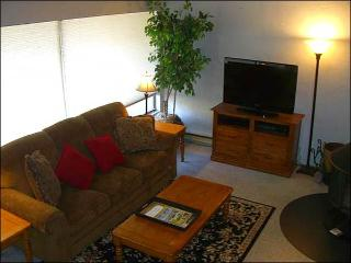 Sunny & Open Vacation Condo - Stylish Furnishings Throughout (1323), Crested Butte