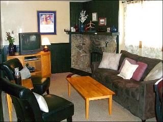 Stylish & Modern Condo - Easy Access to Downtown Crested Butte (1352)